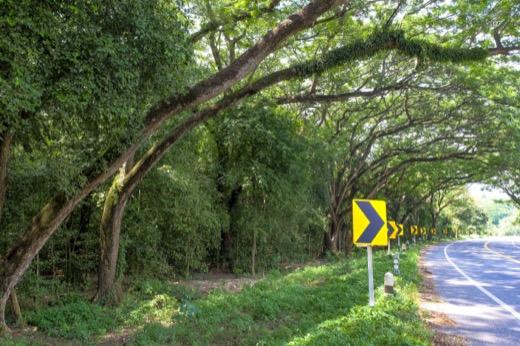 columbia south carolina auto crash attorney dangerous roads